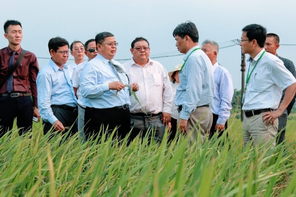 The Myanmar delegation visit the Institute of Crops Research and Development