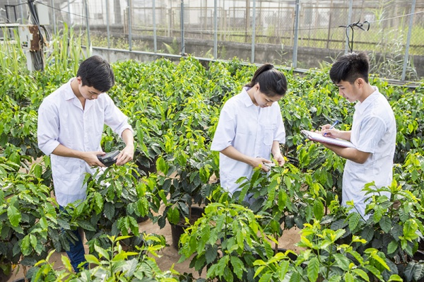 Vietnam National University of Agriculture (VNUA)'s students practice at VNUA's nursery.